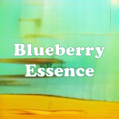 Blueberry Essence strain
