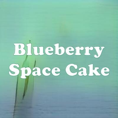 Blueberry Space Cake strain