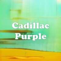 Cadillac Purple strain