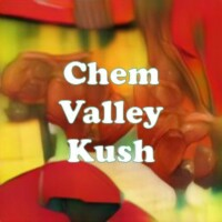 Chem Valley Kush strain