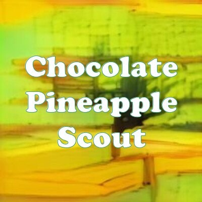 Chocolate Pineapple Scout strain
