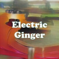 Electric Ginger strain