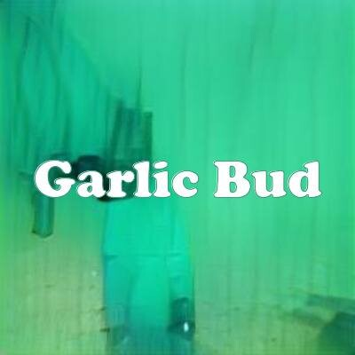 Garlic Bud strain