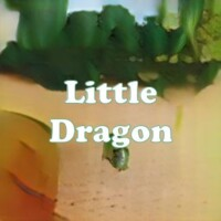 Little Dragon strain