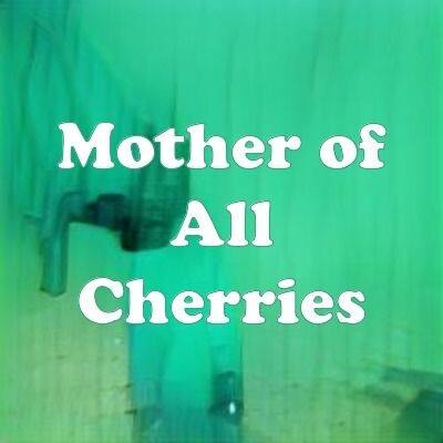 Mother of All Cherries strain
