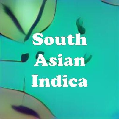 South Asian Indica strain